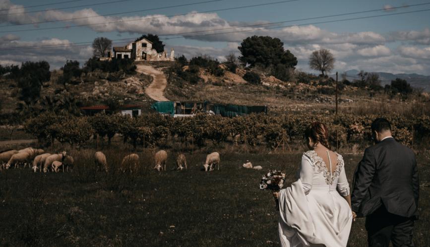La elección de Marina para su boda